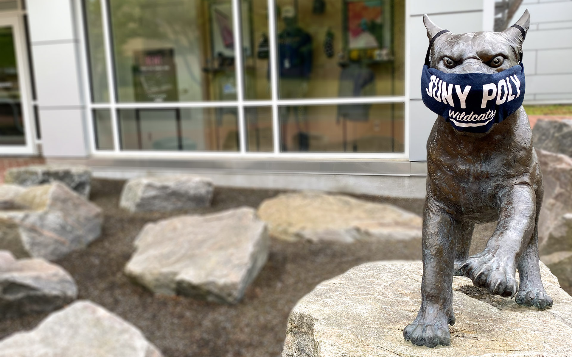 Wildcat statue with mask on face.