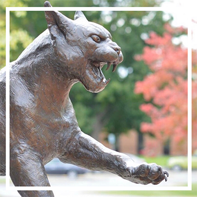Photo of Wildcat statue