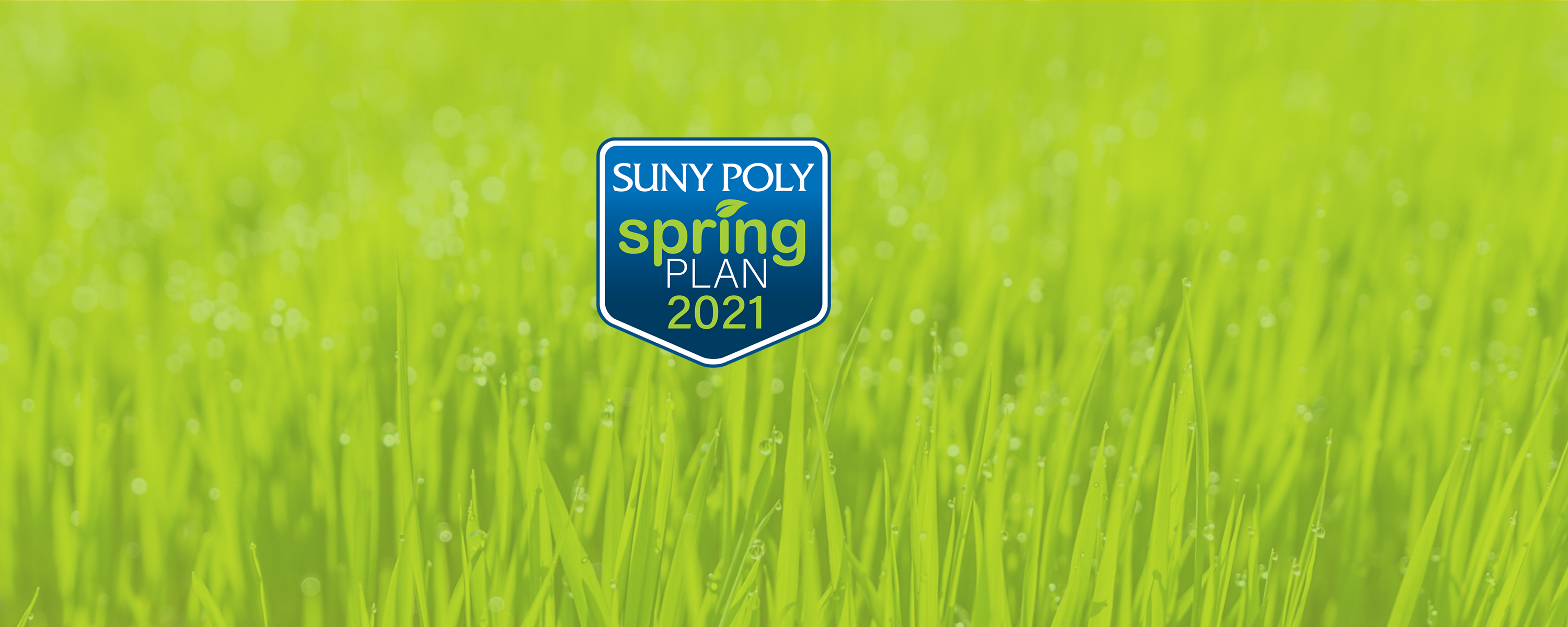 Spring 2021 Graphic Image